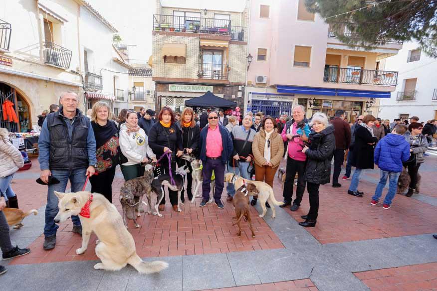 Más de 200 perros reciben en l'Alfàs del Pi la bendición de San Antón