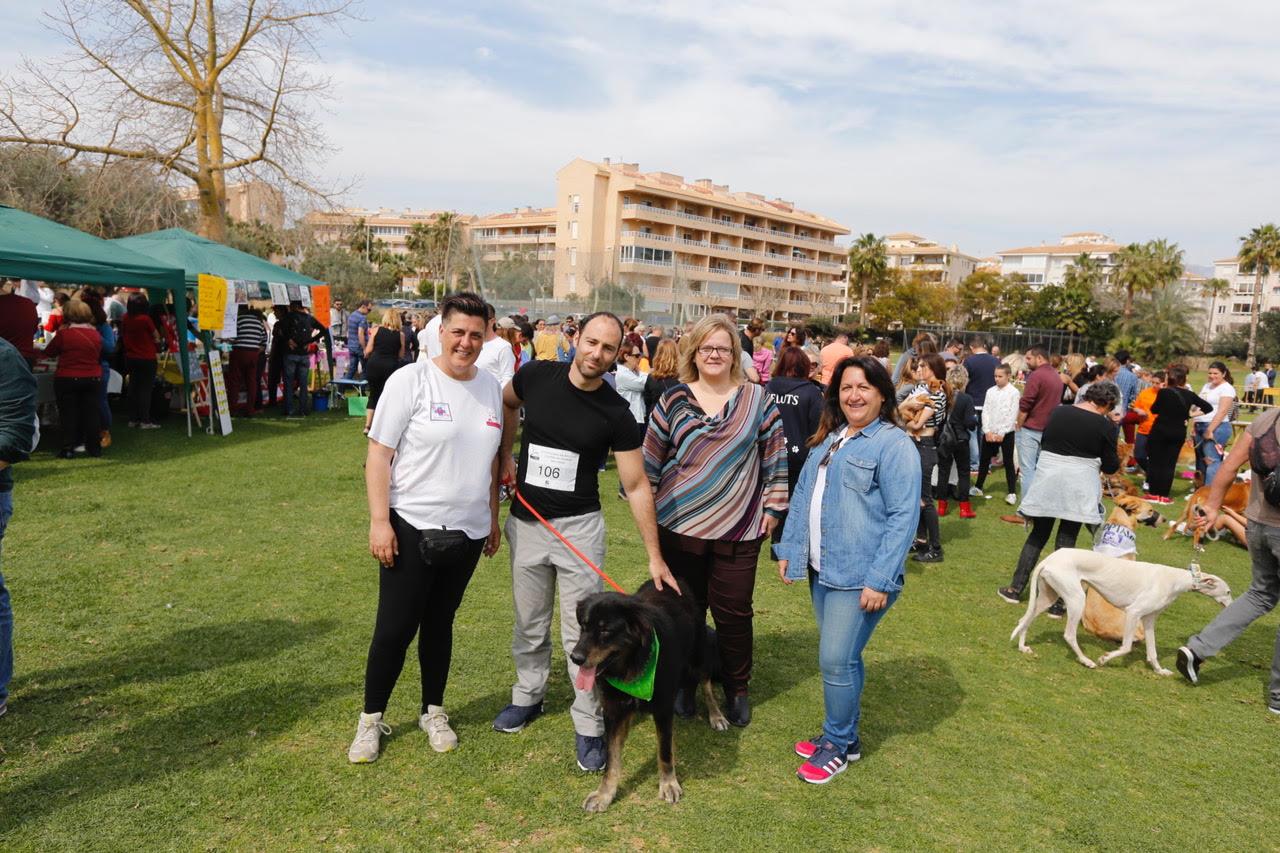 El tercer Festival Canino y de la Adopción de l'Alfàs congrega a más de dos mil personas