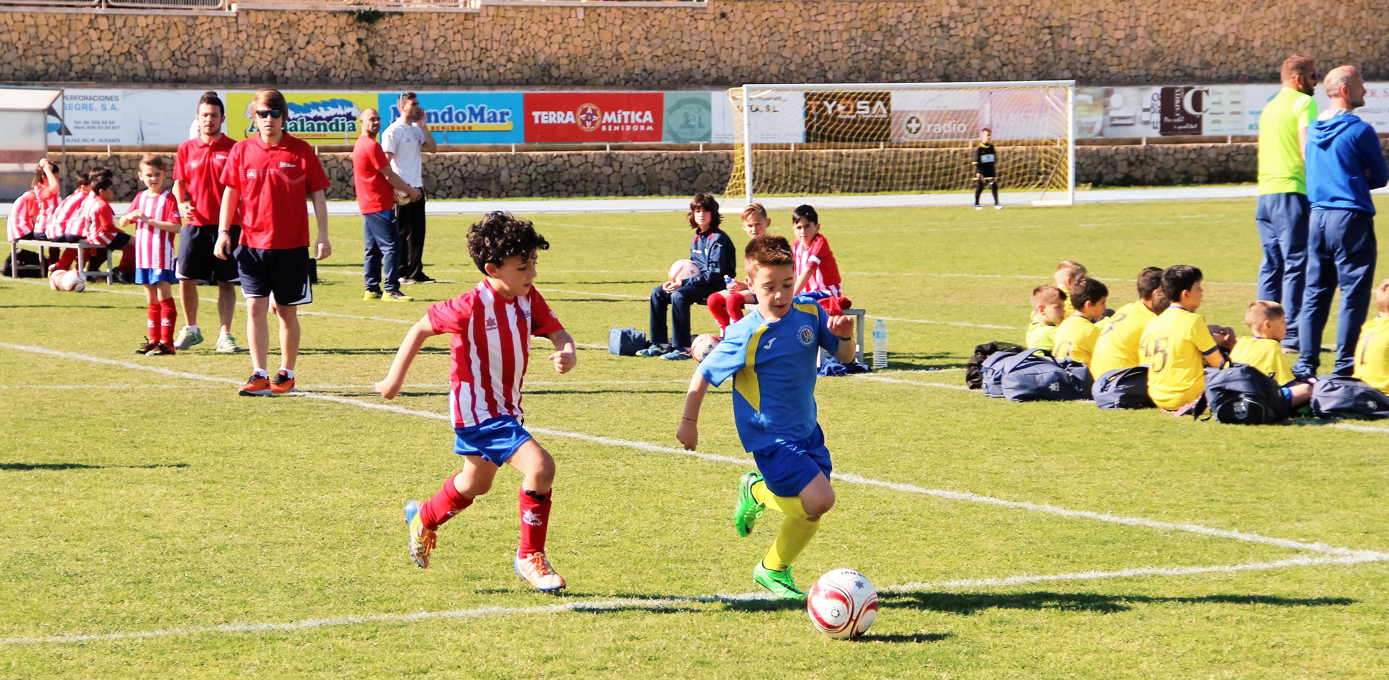 El CF l'Alfàs del Pi celebrara mañana sábado un día de convivencia con los equipos de la escuela de fútbol de Colmenar Viejo de Madrid