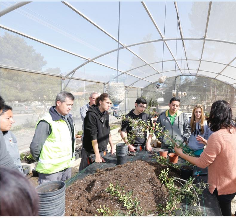 L'Alfàs trabaja en la conservación y recuperación de  flora autóctona en peligro de extinción