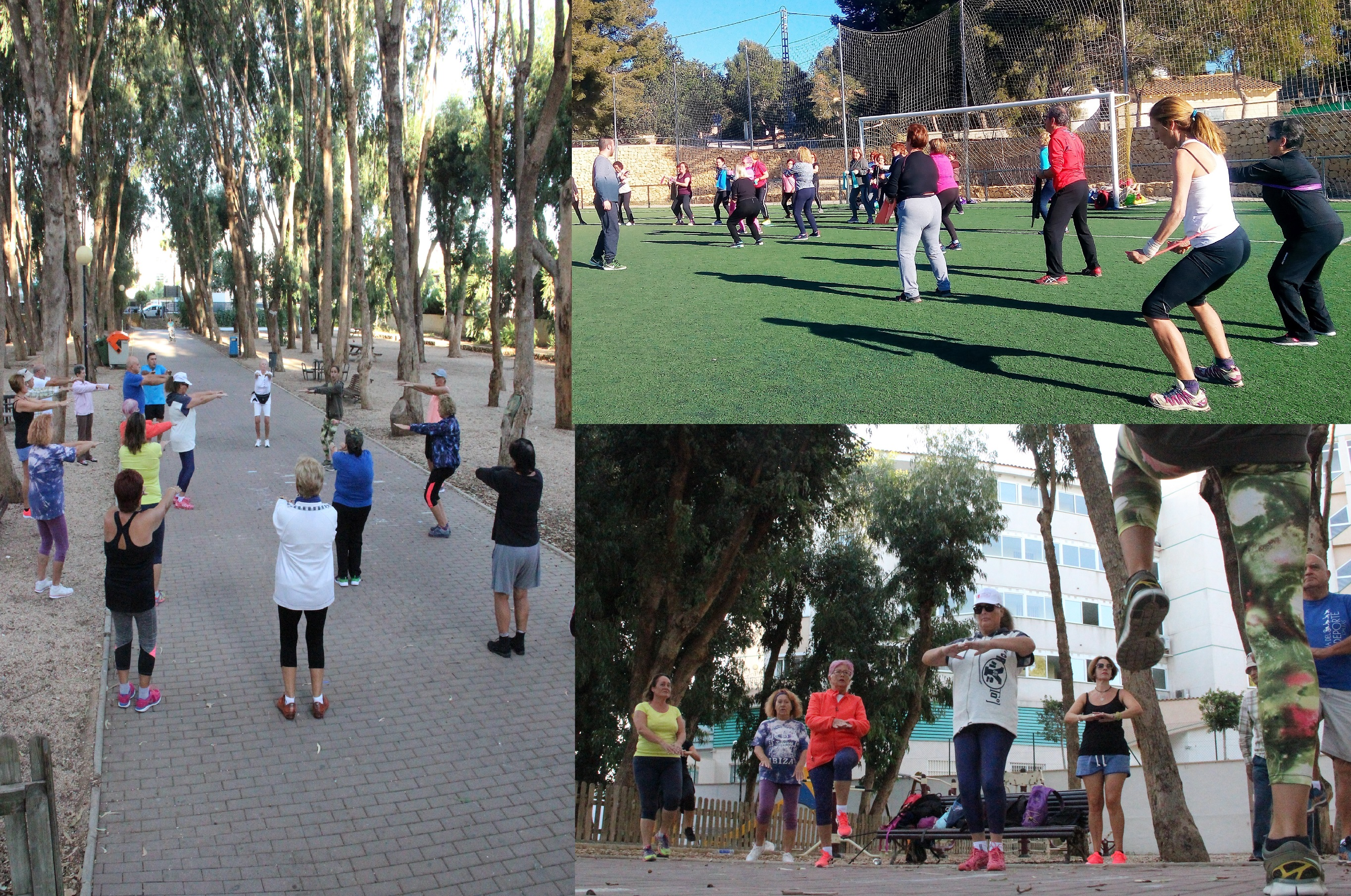 Este año 60 personas participan en las actividades físicas  para mayores de la concejalía de deportes.