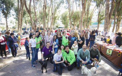 El V Festival Canino y de la Adopción de l'Alfàs congrega a cerca de un millar de personas