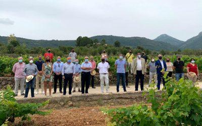 L'Alfàs del Pi apoya  al Moscatel de la D.O.P. Alicante en su primer día de celebración