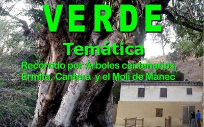 El próximo 22 de junio se celebra la tradicional 'Caminata Verde' entre árboles singulares de l'Alfàs